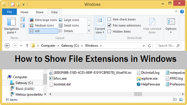 Mostra estensione file in Windows 7 e Windows 8